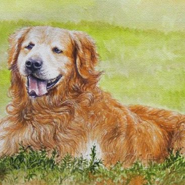 Dog Watercolor Portrait