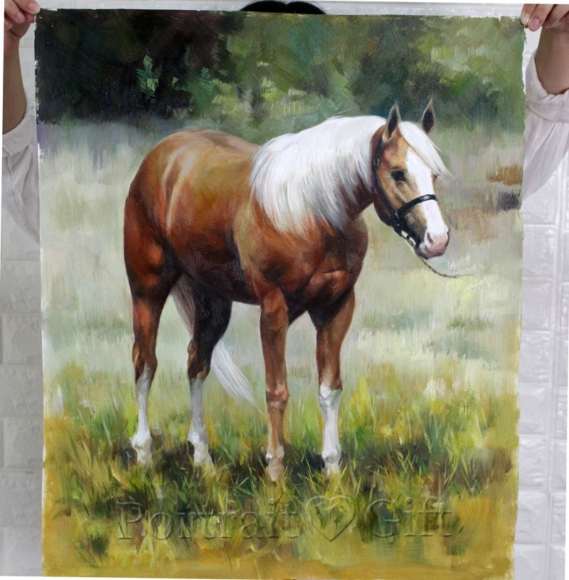 A Brown and White Horse 2